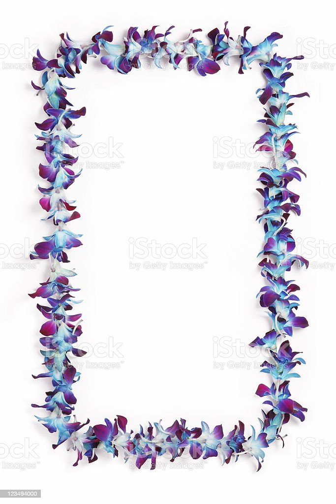 hawaiian lei border stock photo