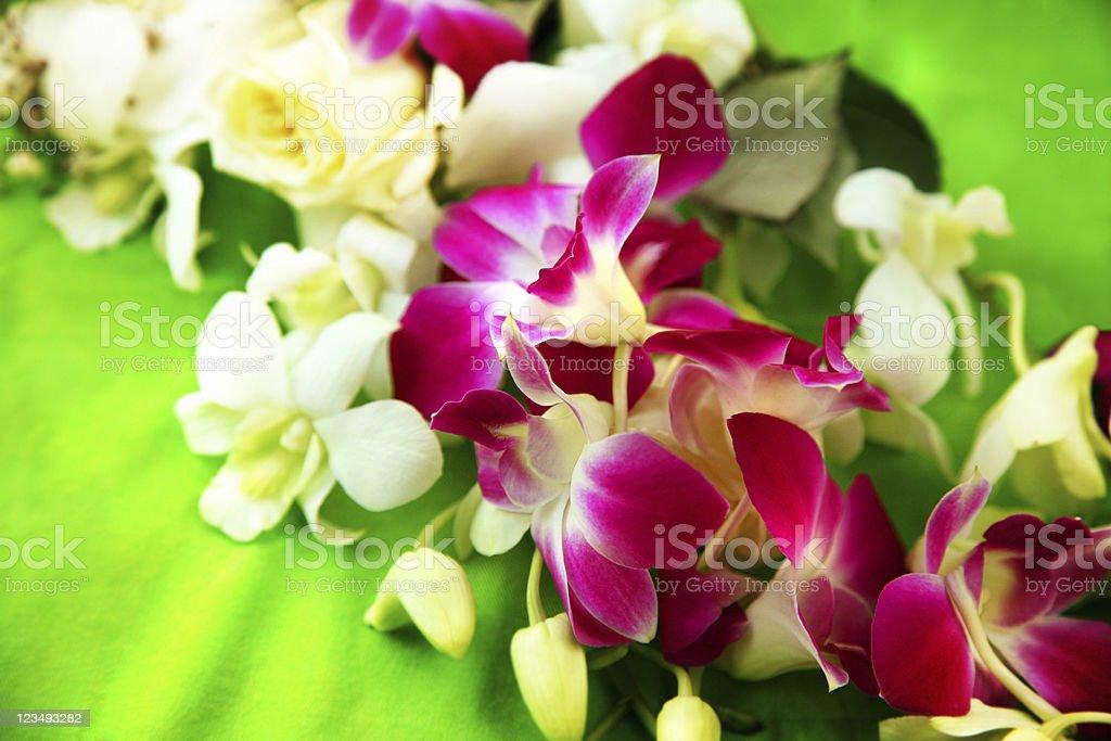 Hawaiian Lei royalty-free stock photo