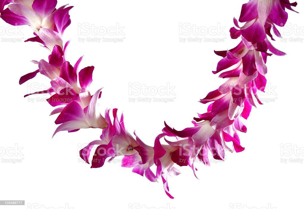 Hawaiian lei stock photo