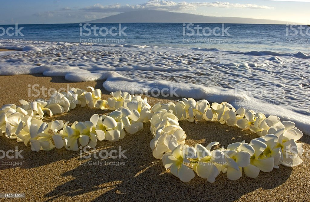 Hawaiian Leis royalty-free stock photo