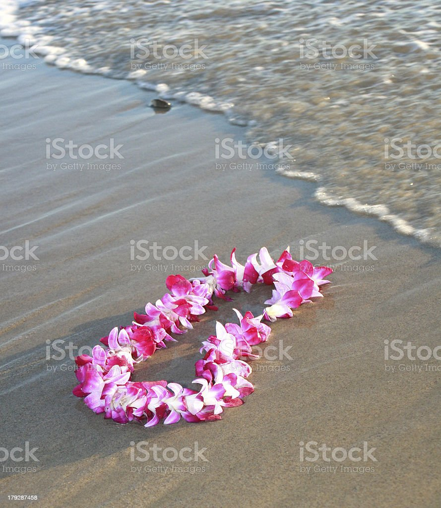Hawaiian Orchid Lei stock photo