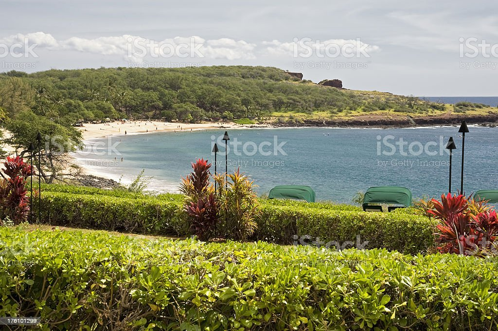 Hawaiian Resort stock photo