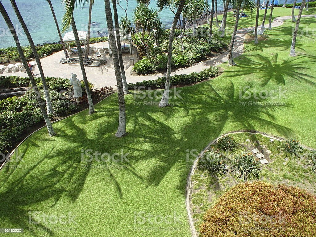 Hawaiian Resort royalty-free stock photo