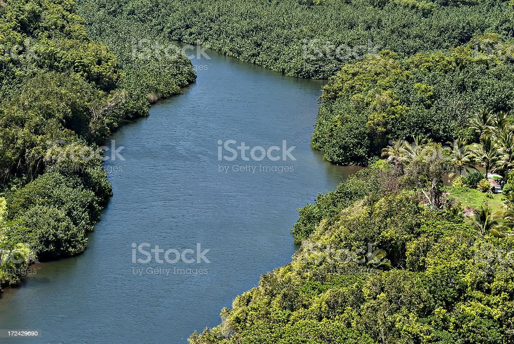 Hawaiian river in the forest royalty-free stock photo