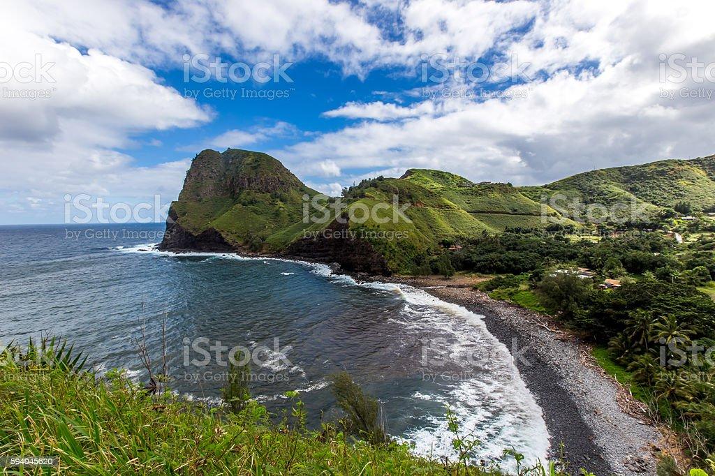 Hawaiian rock beach with trees stock photo