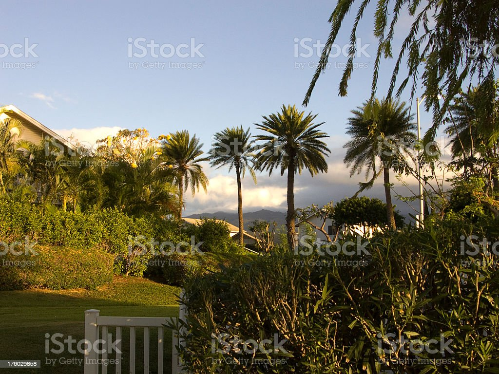 Hawaiian Suburb stock photo