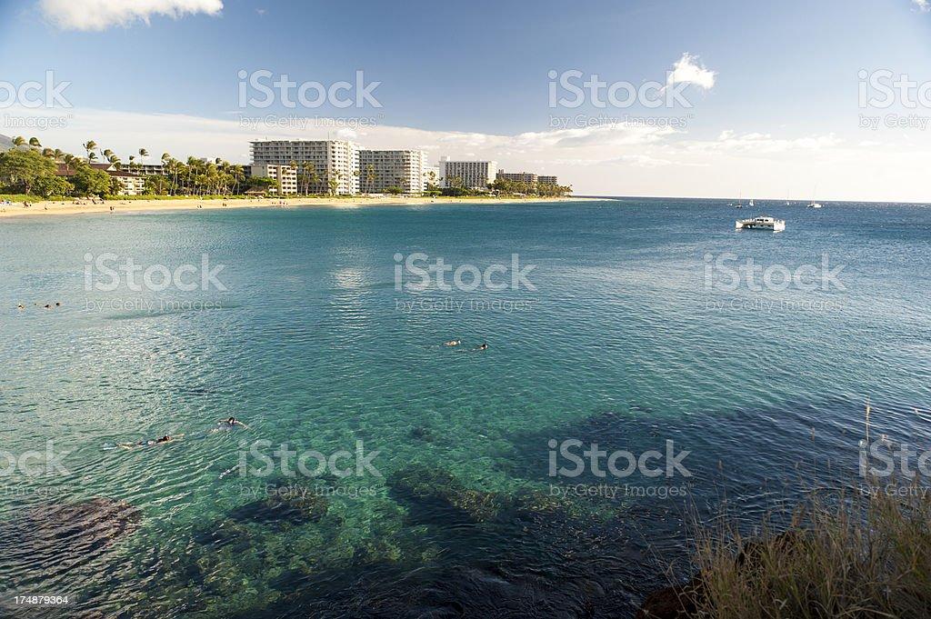Hawaiian Vacation stock photo