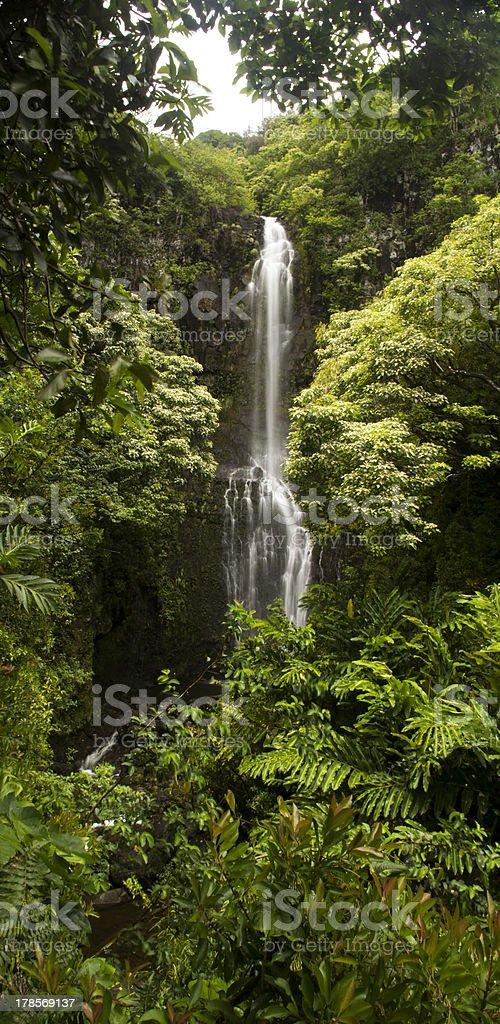 Hawaiian Waterfall royalty-free stock photo
