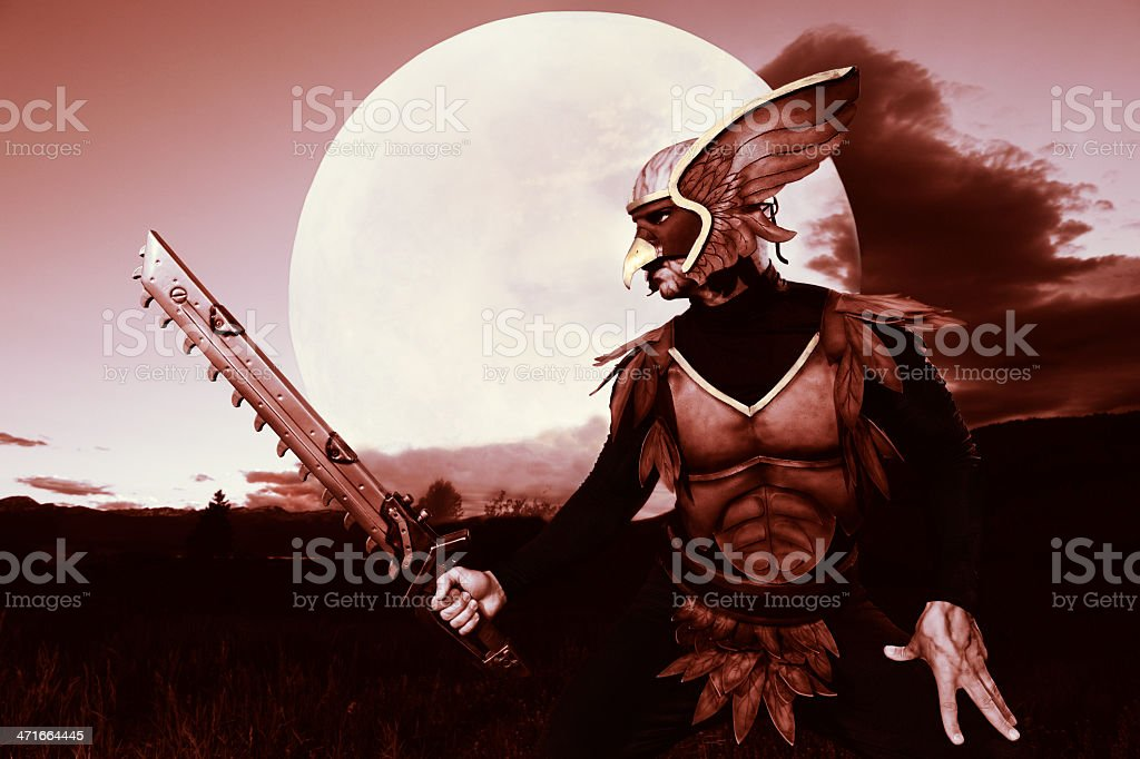 Hawk Like Super Hero Standing In Front Of New Moon royalty-free stock photo