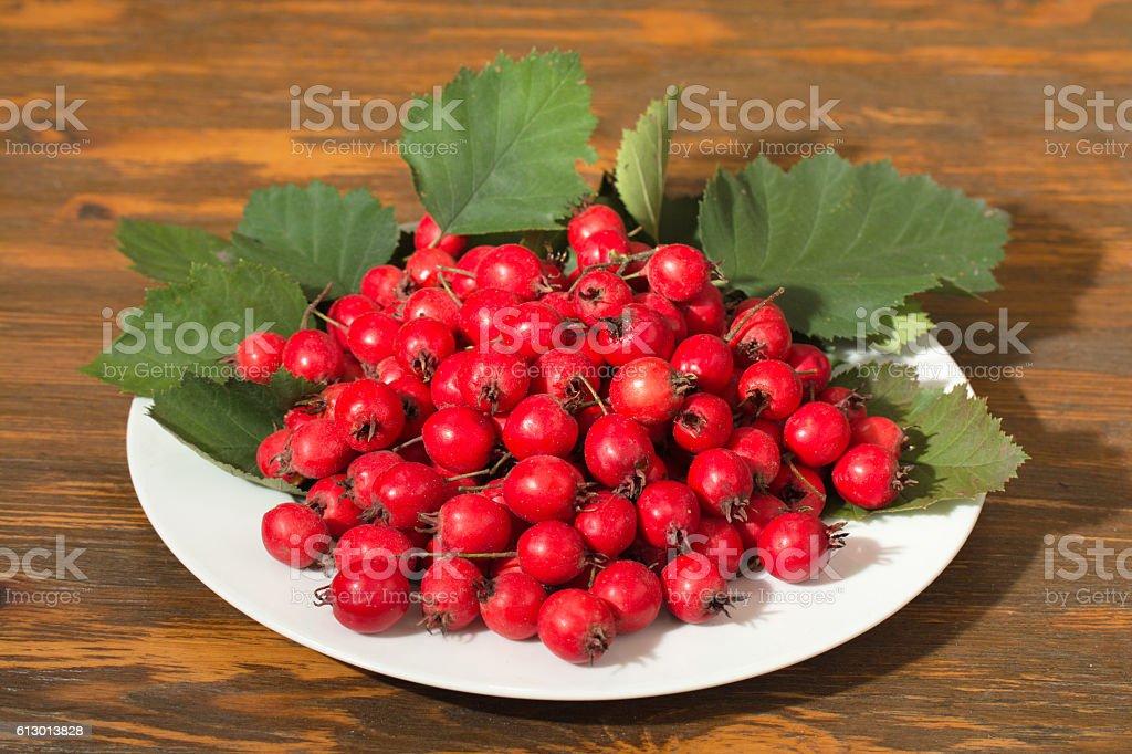 hawthorn fruit on a plate stock photo