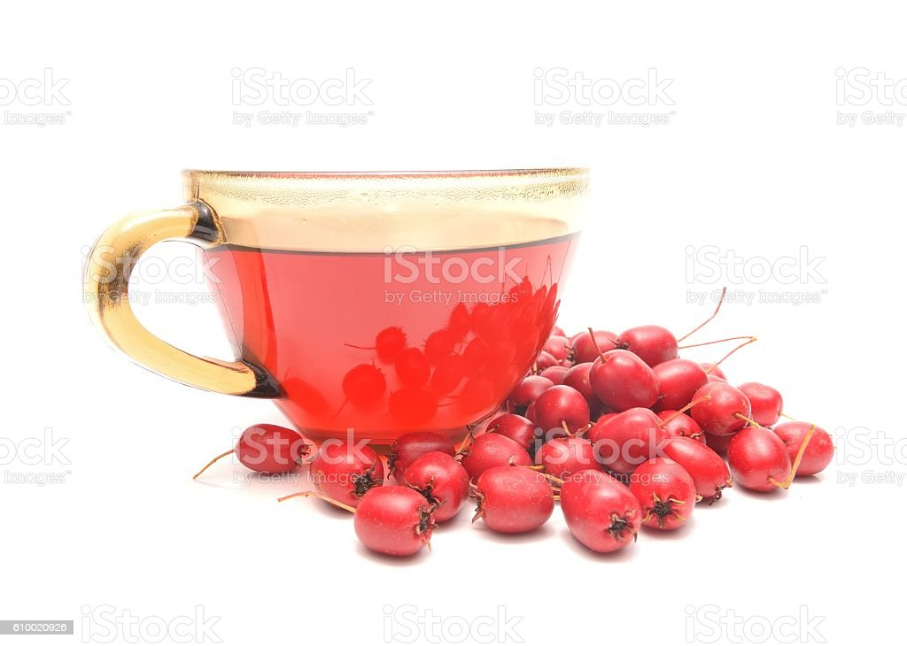 Hawthorn tea and ripe fruits of hawthorn stock photo