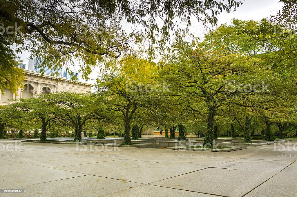 hawthorn trees in Chicago stock photo