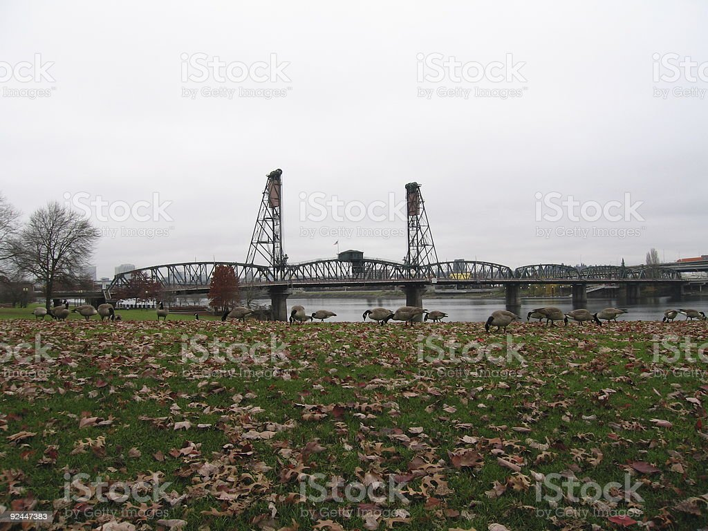 Hawthorne Bridge 1 royalty-free stock photo
