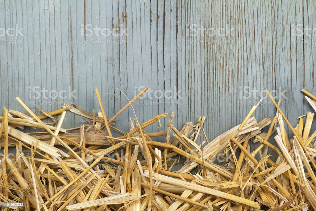 hay against an old blue wooden wall stock photo