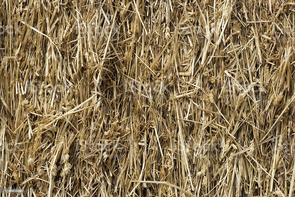 Hay Background royalty-free stock photo