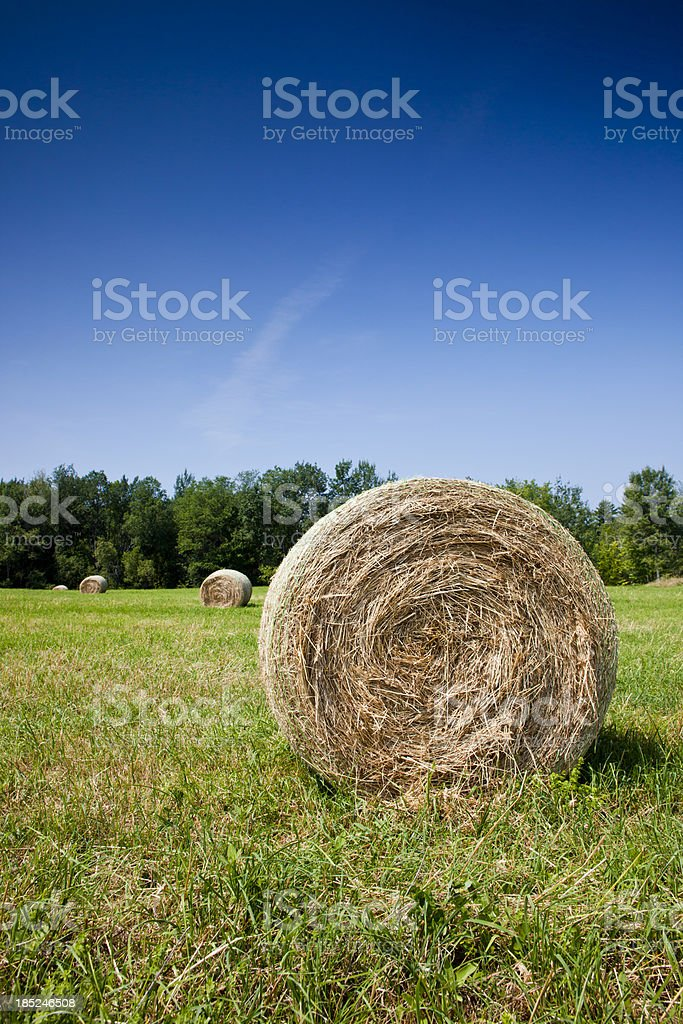 Hay Bail in field. royalty-free stock photo