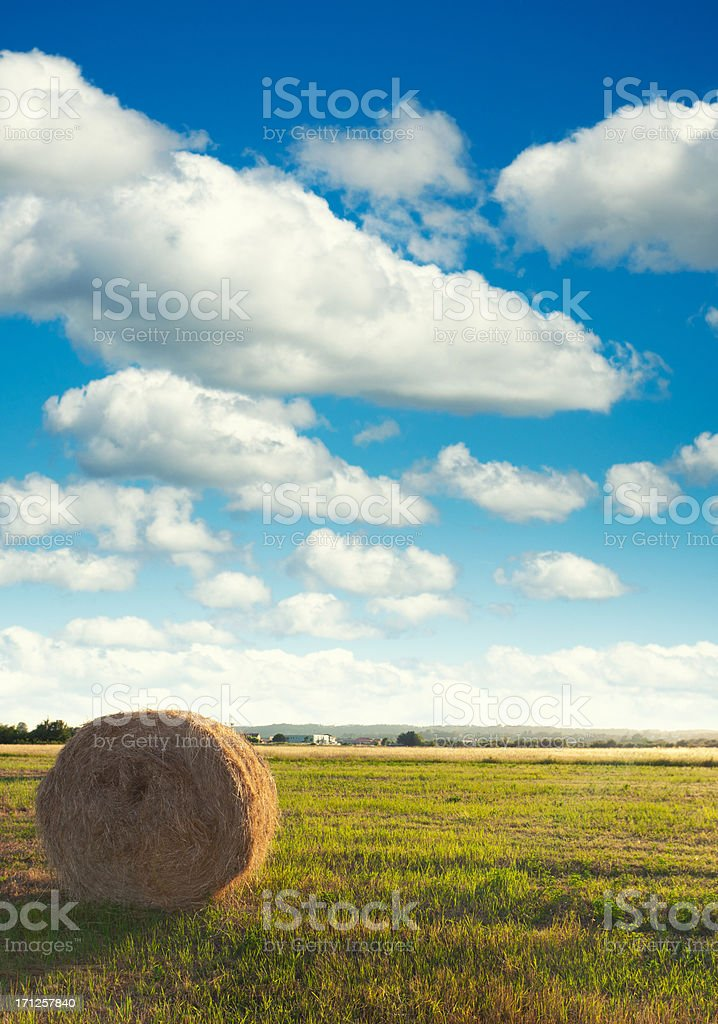 Hay bail on pring field at dusk royalty-free stock photo