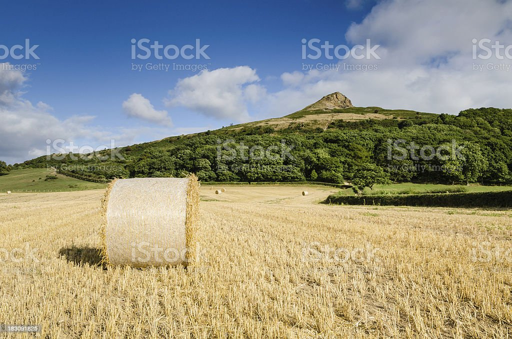 Hay bale at Roseberry Topping stock photo