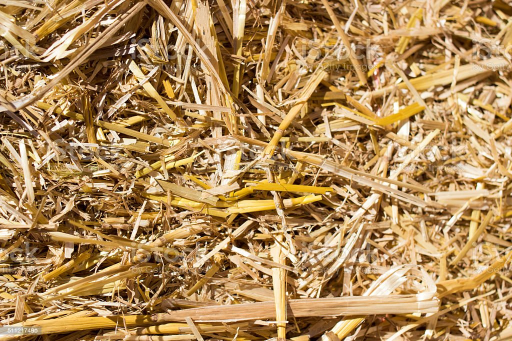 Hay bale close up stock photo