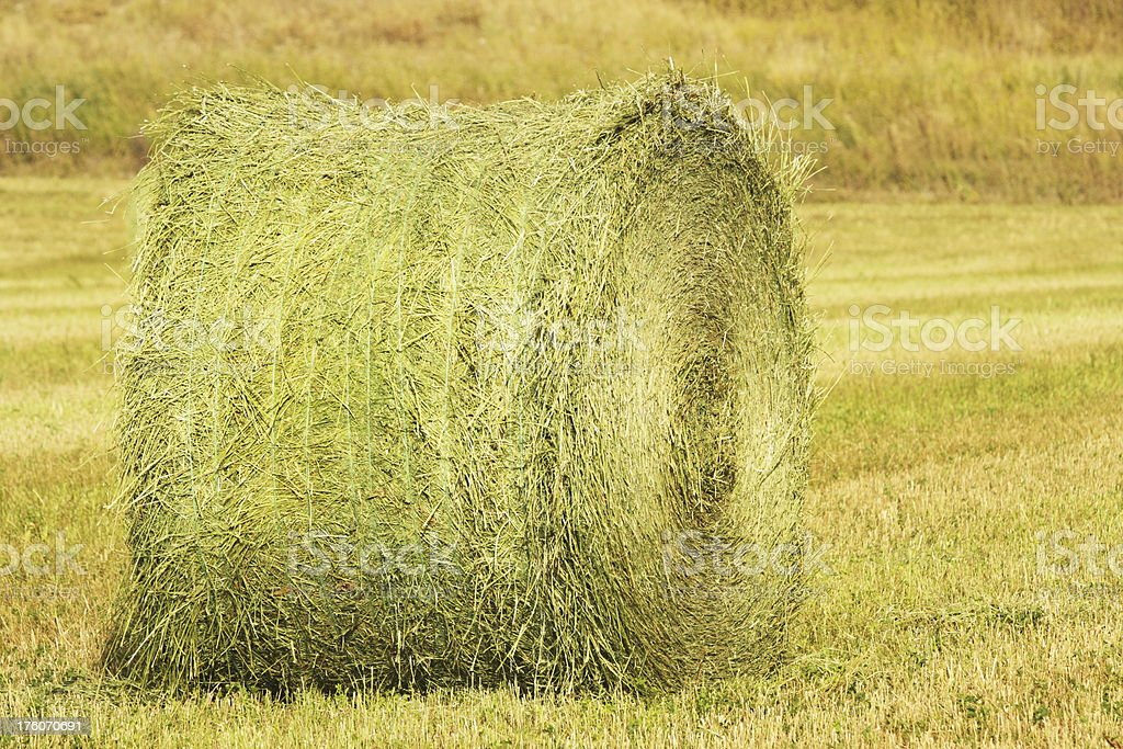 Hay Bale Crop Farm Agriculture royalty-free stock photo