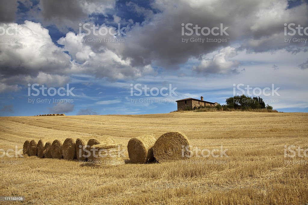 Hay Bale on harvested field royalty-free stock photo