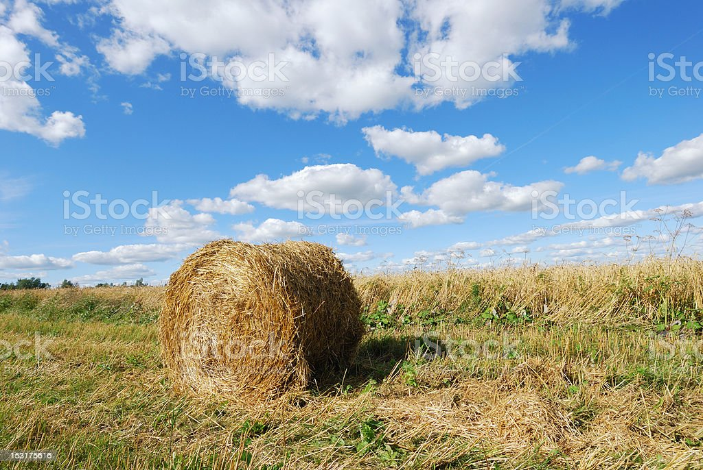 Hay bale on sky background royalty-free stock photo