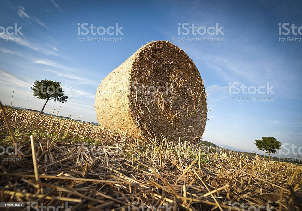 Hay Bale on the late Afternoon royalty-free stock photo