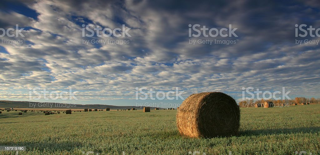 Hay Bale royalty-free stock photo