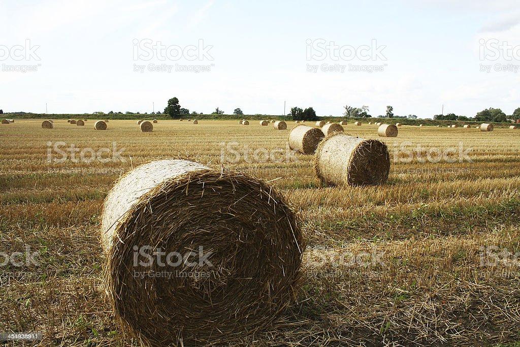 Hay Bale Scenery stock photo