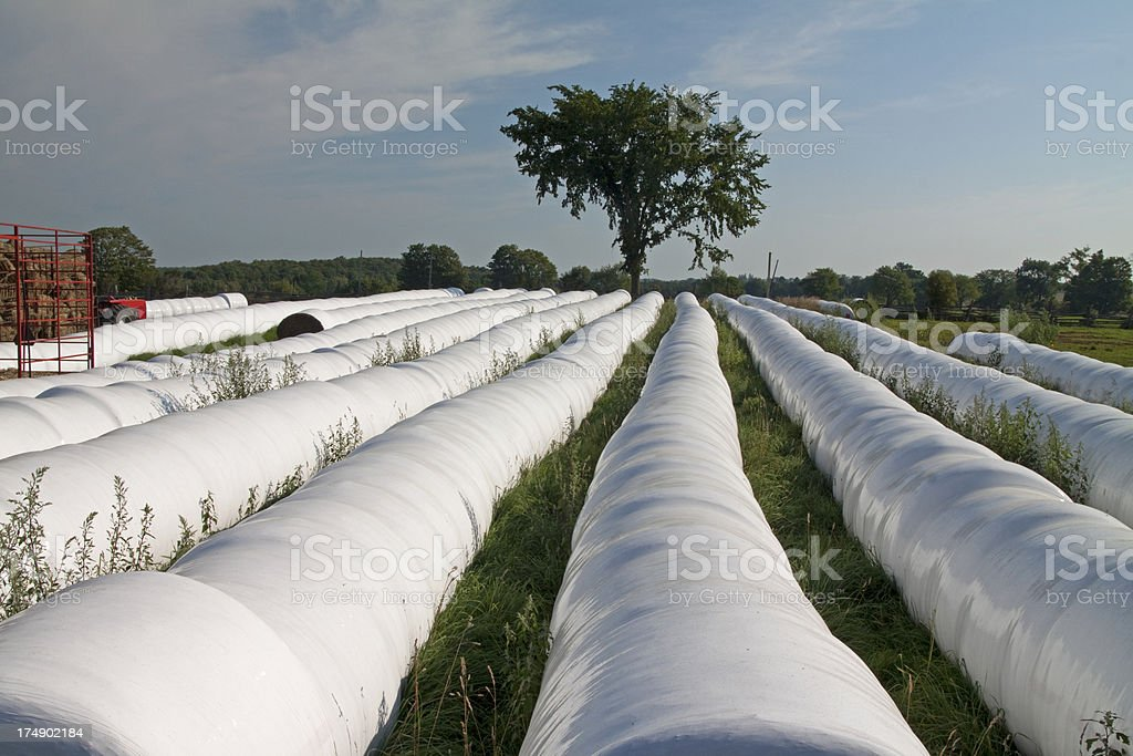 Hay bale wrap royalty-free stock photo