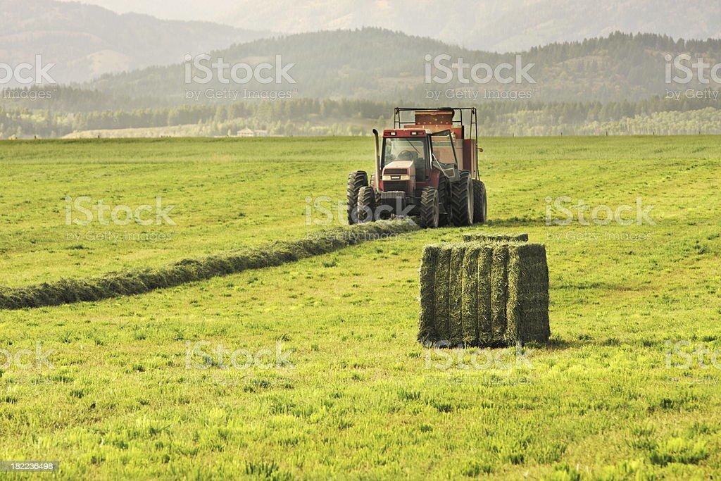 Hay Baler Tractor Farm Field stock photo