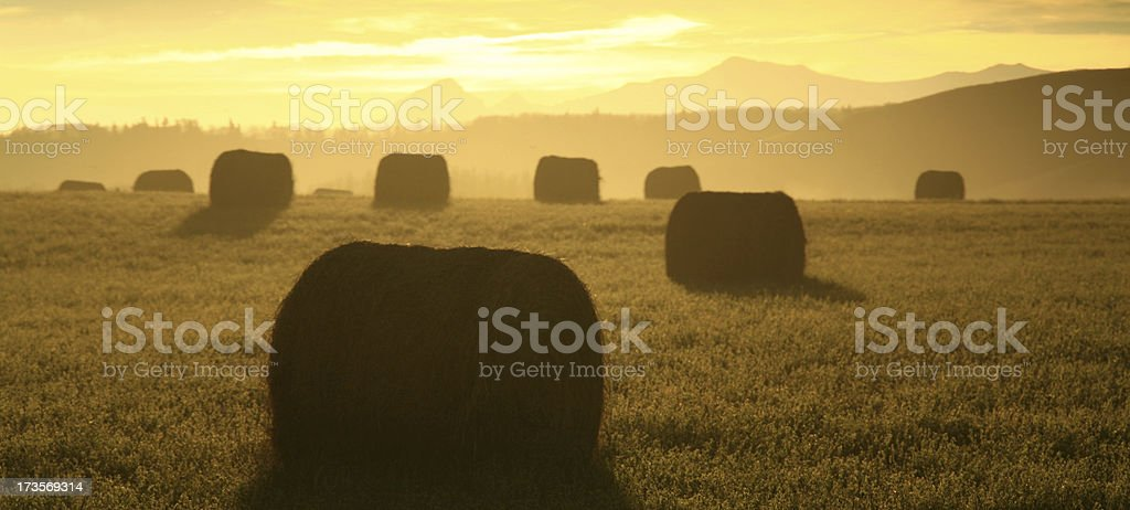 Hay Bales and Mountains royalty-free stock photo