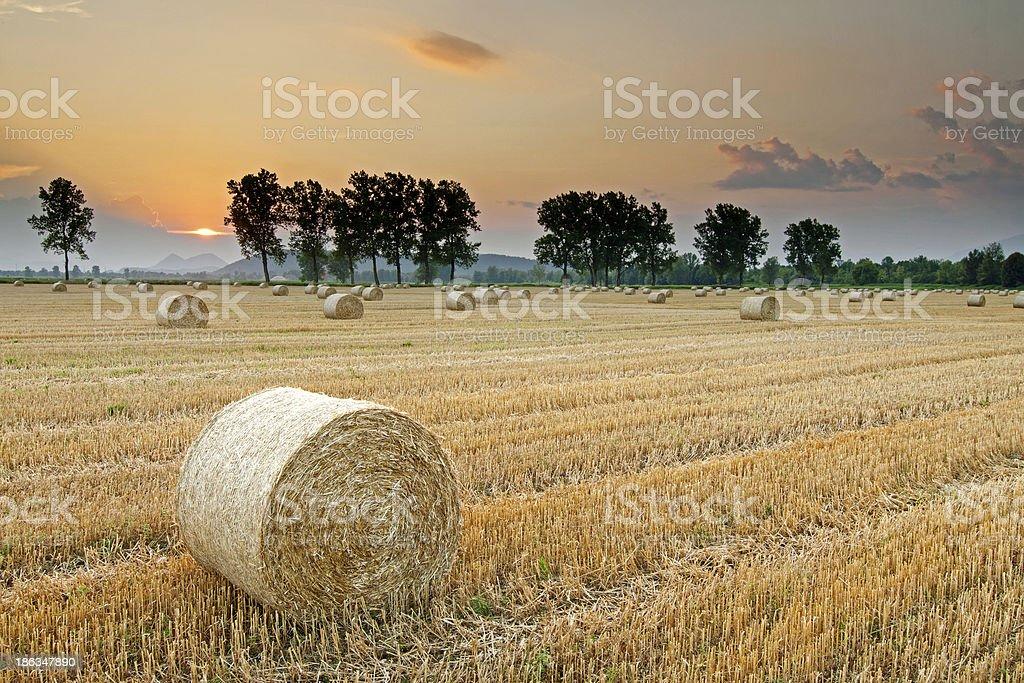 Hay bales at Sunset royalty-free stock photo