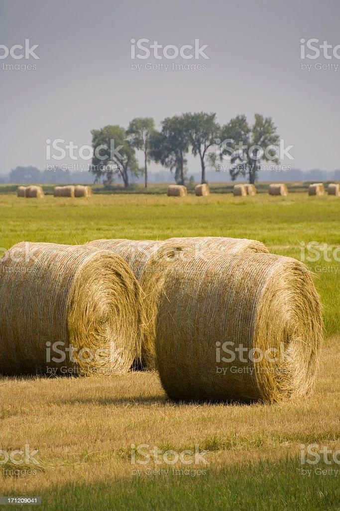 Hay Bales Harvest Vt royalty-free stock photo