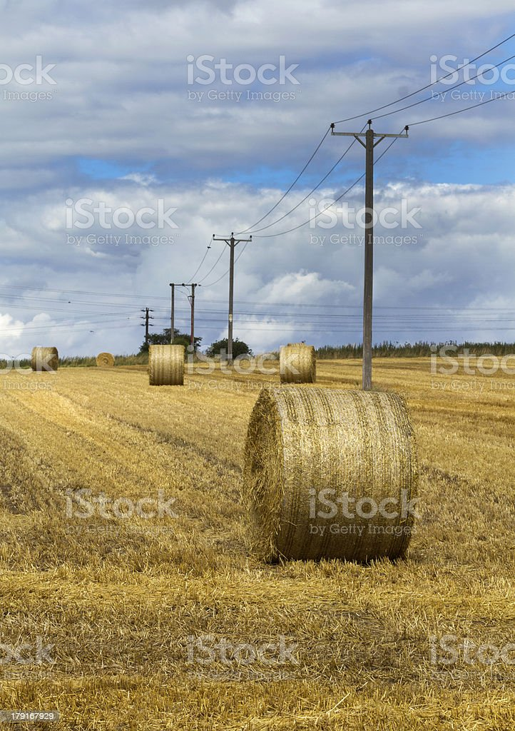 Hay bales in farmers field royalty-free stock photo