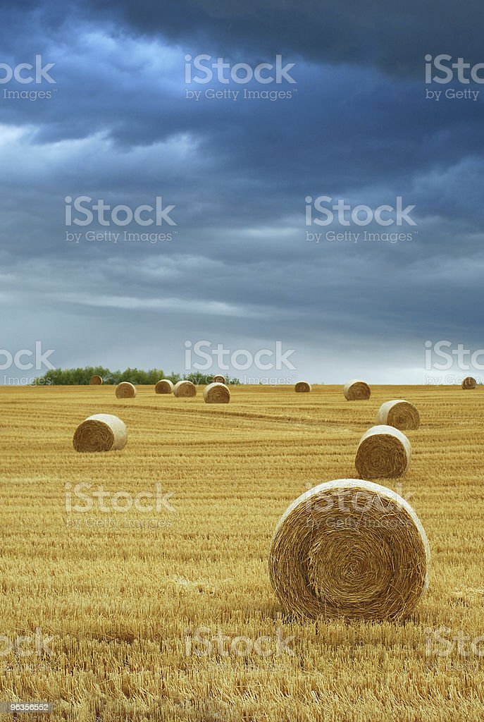 Hay Bales in Field with Stormy Sky royalty-free stock photo
