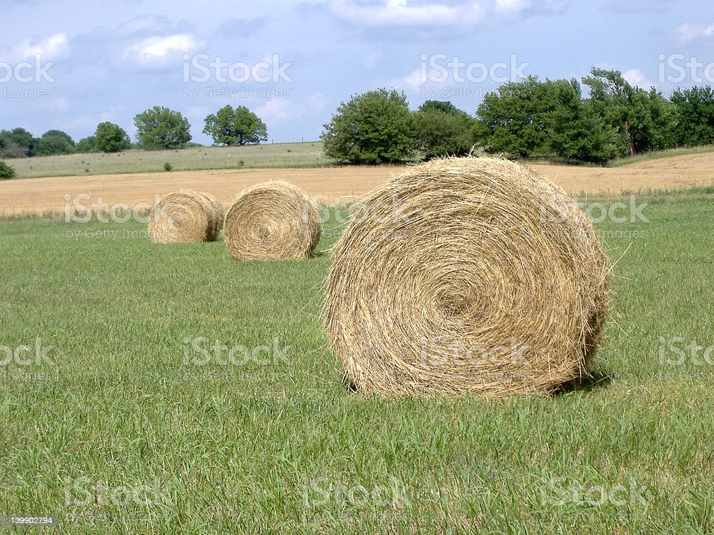 Hay Bales in Mid-Afternoon Sun stock photo