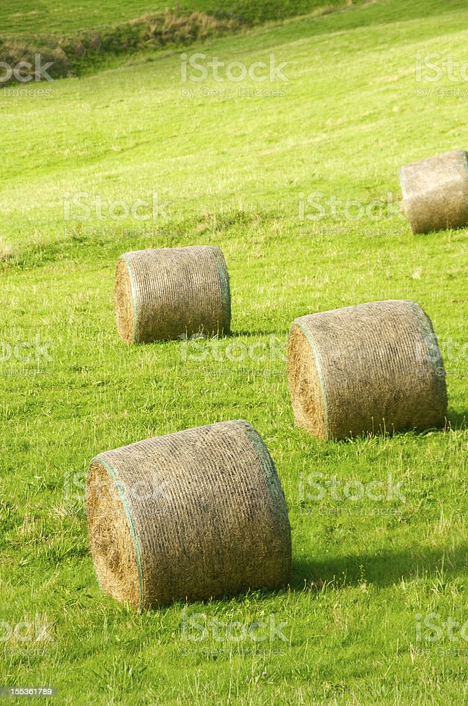 Hay Bales in open field royalty-free stock photo