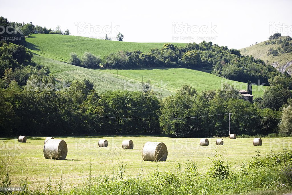 Hay bales in rural zone of Modena stock photo