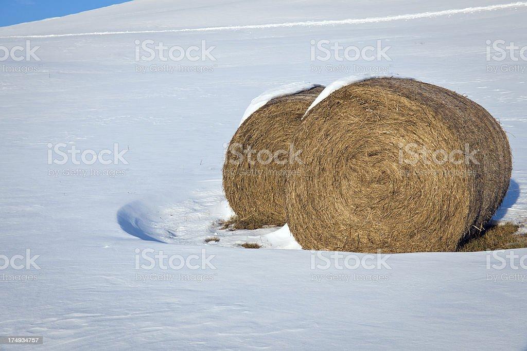 Hay Bales in Snow Winter Slovenia Europe royalty-free stock photo