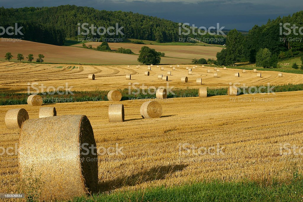 hay bales in storm light stock photo