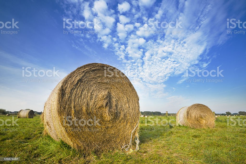 Hay Bales In Sunlight royalty-free stock photo