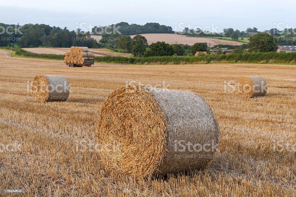 Hay Bales Landscape stock photo