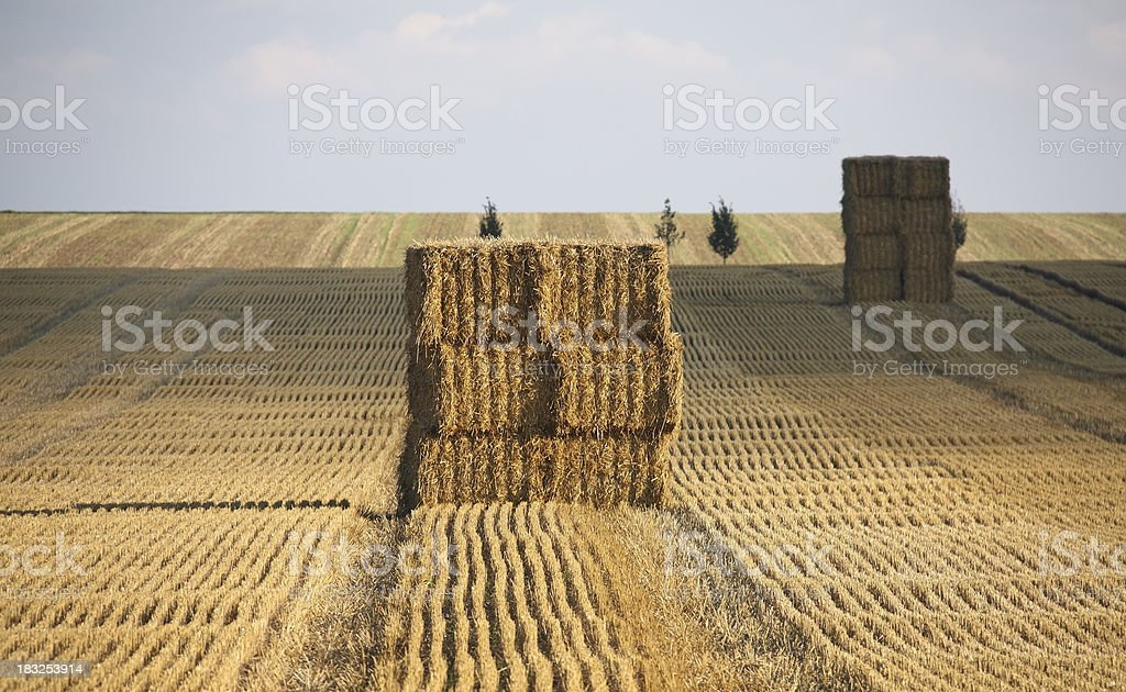Hay bales on a late summer afternoon royalty-free stock photo
