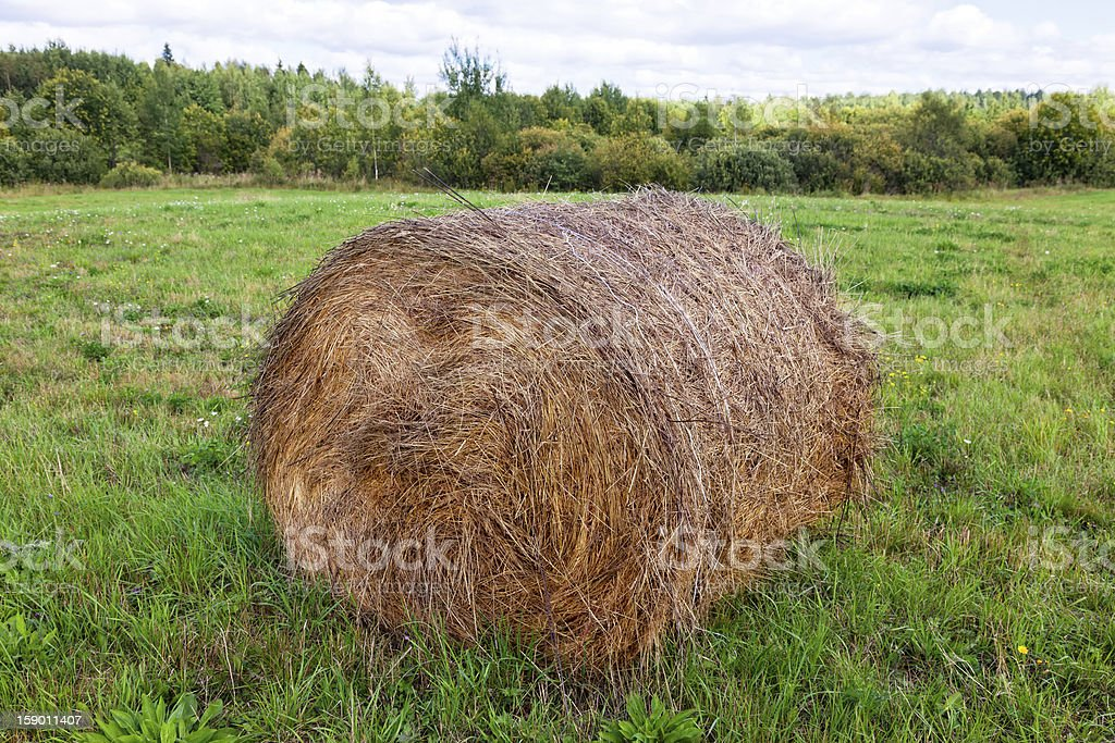 Hay bales on the field royalty-free stock photo