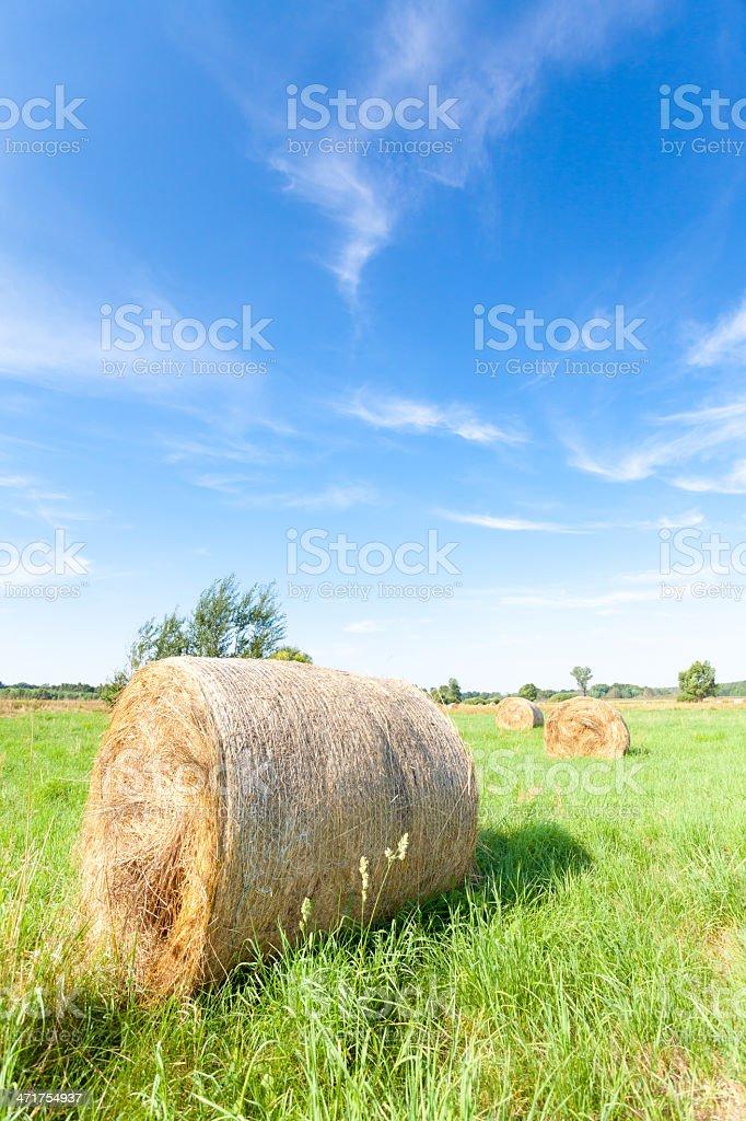 Hay bales royalty-free stock photo