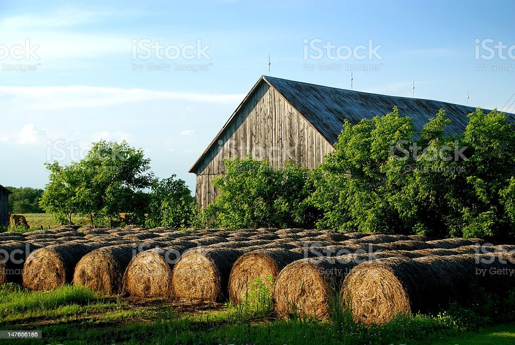 Hay Bales stored outdoor at sunset royalty-free stock photo