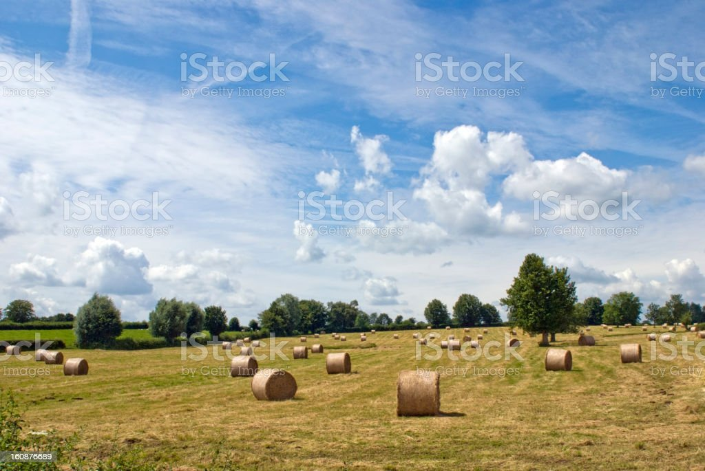 Hay bales under blue sky on a harvested field stock photo