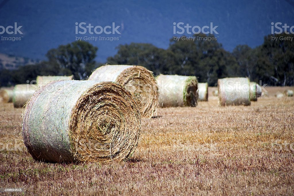Hay bales with mountain background stock photo
