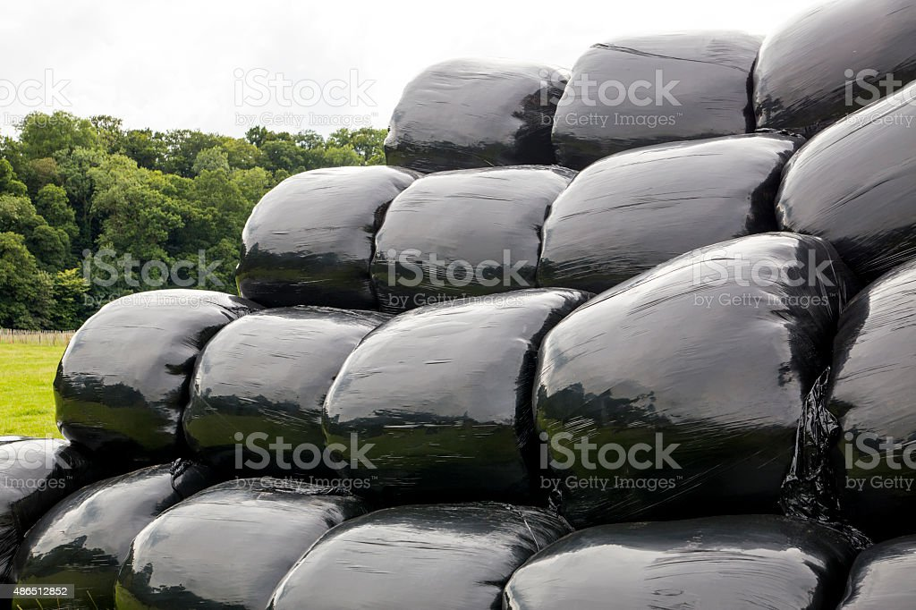 Hay Bales wrapped for storage stock photo